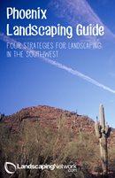 Phoenix Landscaping Guide