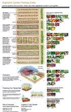Vegtable Garden Planting Guide PDF