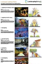 Exceptional Landscape Lighting Infographic