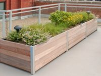 Problem-Solving Planters for Rooftops & Balconies