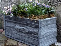 Concrete Planters Offer Durability & Style