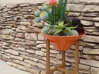 Modern & Sustainable Planters