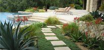 San Diego pool landscaping
