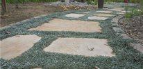 silver carpet