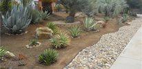 natural driveway drainage
