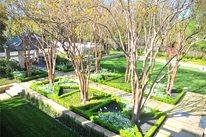 Texas Estate Landscape