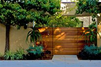 Drought-Tolerant Outdoor Living Space