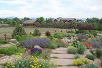 Xeriscape Garden Path J&S Landscape Longmont, CO