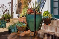 Pot Grouping Container Gardens Grace Design Associates Santa Barbara, CA