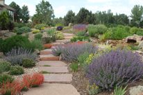 Hillside Path Walkway and Path J&S Landscape Longmont, CO