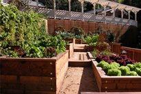 Garden Design Avant Garden San Anselmo, CA