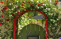 Red Garden Arbor Landscaping Network Calimesa, CA