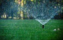 Sprinklers Cost