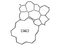 Random Stone, Concrete Pattern Landscaping Network Calimesa, CA