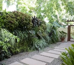 Living Wall, Concrete Paver Walkway