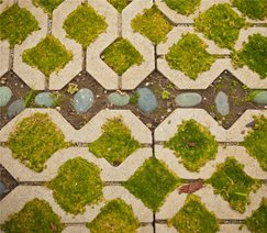 Grasscrete Paving Landscaping Network Calimesa, CA