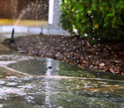 Sprinkler Spray Landscaping Network Calimesa, CA