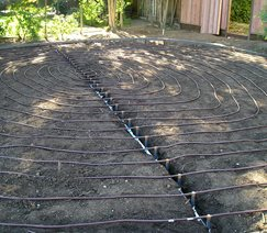 Drip Irrigation, Sub Surface Walkway and Path Aesthetic Gardens Mountain View, CA