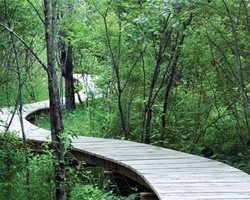 Half-Mile, Hand-Built Line: Berkshire Boardwalk