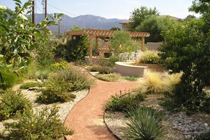 Backyard Xeriscape Garden, Pergola, Fireplace Backyard Landscaping Red Twig Studio Albuquerque, NM