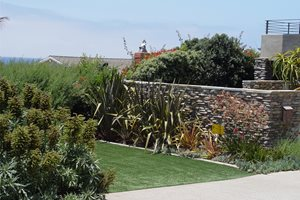 Backyard Landscaping Maureen Gilmer Morongo Valley, CA
