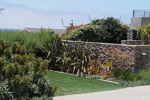 Backyard Landscaping Maureen Gilmer Morongo Valley, CA