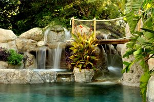 Pool Deck Backyard Landscaping The Green Scene Chatsworth, CA