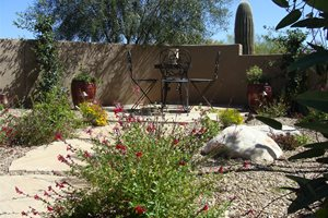 Small Patio, Desert Patio Front Yard Landscaping Casa Serena Landscape Designs LLC Las Cruces, NM