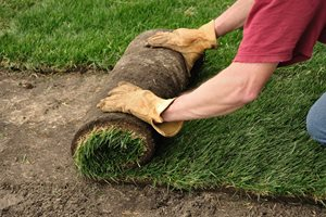 How To Lay Sod Lighting Landscaping Network Calimesa, CA