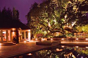 Tree, Oak, Lights, Pool Mediterranean Landscaping Aesthetic Gardens Mountain View, CA