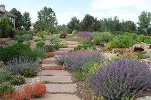 Hillside Path Patio J&S Landscape Longmont, CO
