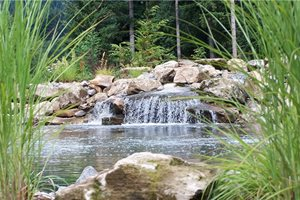 Natural Pond Design, Waterfall Design Pond and Waterfall Woody's Custom Landscaping Inc Battle Ground, WA