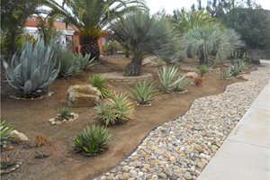 Retaining and Landscape Wall Landscaping Network Calimesa, CA