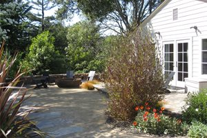 Lawnless Yard Retaining and Landscape Wall Dig Your Garden Landscape Design San Anselmo, CA