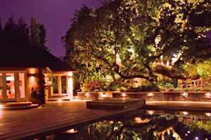 Tree, Oak, Lights, Pool Retaining and Landscape Wall Aesthetic Gardens Mountain View, CA