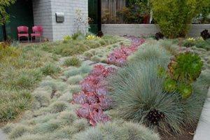 Water Hog Lawns Retaining and Landscape Wall John Evarts - LA Times Blog ,