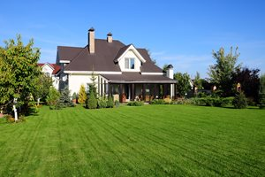 Backyard Lawn, Grass Seed Landscaping Network Calimesa, CA