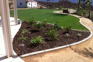 Green Grass, Concrete Edging Aloha Landscape Murrieta, CA