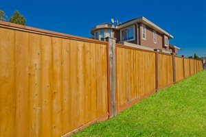 Backyard Fence Cost
