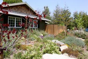 Natural, Garden, Rock Swimming Pool Landscaping Network Calimesa, CA