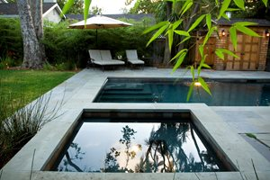 Rectangular Pool, Square Spa Swimming Pool Shades of Green Landscape Architecture Sausalito, CA