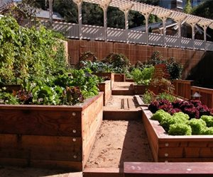 Avant Garden San Anselmo, CA
