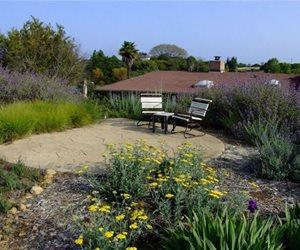 Billy Goodnick Santa Barbara, CA
