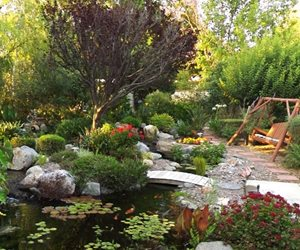 Pond Placement Tips Landscaping Network