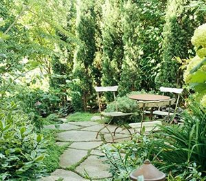 11 Solutions for Small Space Landscapes