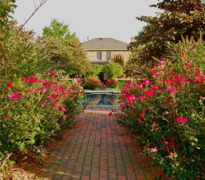 Brick, Path Liquidscapes Pittstown, NJ