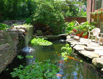 Pond and Waterfall Pictures Gallery Landscaping Network