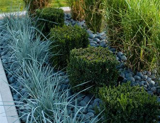 Tiered Planting Pictures Gallery Landscaping Network