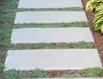 Walkway And Path Pictures Gallery Landscaping Network