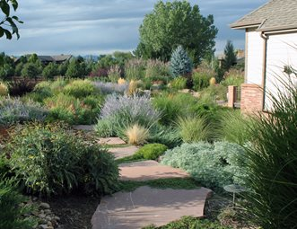 Xeriscape Landscaping Pictures - Gallery - Landscaping Network